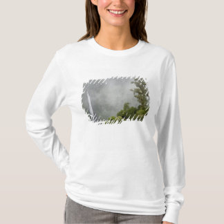 Costa Rica, cloud forest in mountains near La T-Shirt