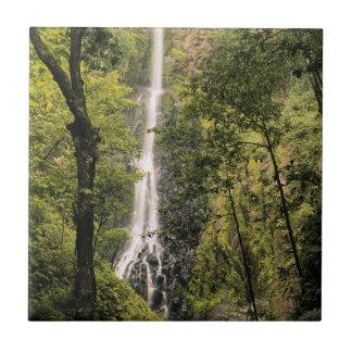 Costa Rica, Cocos Island, Wafer Bay Waterfall Tile