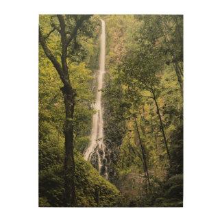Costa Rica, Cocos Island, Wafer Bay Waterfall Wood Print