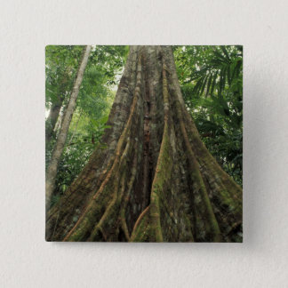 Costa Rica, Corcovado National Park, Buttressed 15 Cm Square Badge