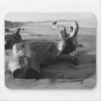 Costa Rica Driftwood Beach Photo Card Mouse Pad