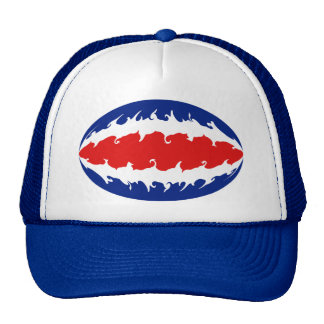 Costa Rica Gnarly Flag Hat
