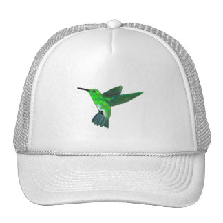 Costa Rica Hummingbird Trucker Hat