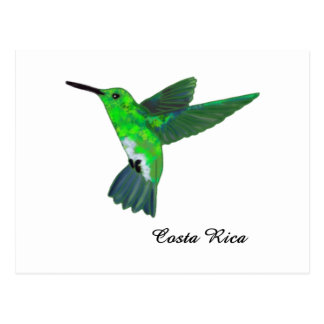 Costa Rica Hummingbird Postcard
