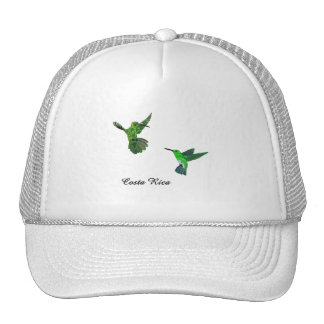 Costa Rica Hummingbirds Mesh Hat