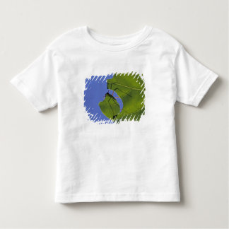 Costa Rica, Leaf cutter ants, Atta cephalotes Toddler T-Shirt