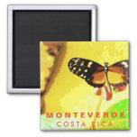 Costa Rica Monteverde Butterfly Souvenir Magnet
