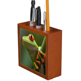 Costa Rica, Monteverde, Red-Eyed Tree Frog Desk Organiser
