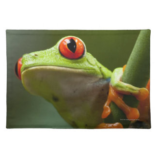 Costa Rica, Monteverde, Red-Eyed Tree Frog Placemat
