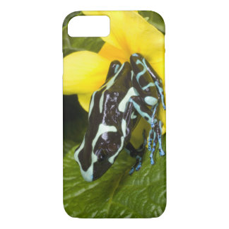 Costa Rica, Osa Peninsula. Close-up of poison iPhone 8/7 Case