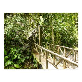 Costa Rica - Parrita - Puntarenas - Bridge Postcard