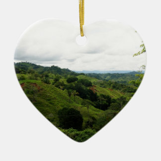 Costa Rica Rain Forest Christmas Ornament