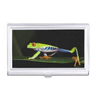 Costa Rica, Red-eyed Tree Frog (Agalychnis Business Card Holder