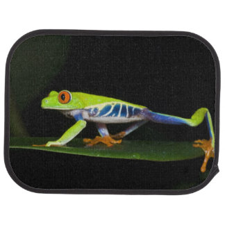 Costa Rica, Red-eyed Tree Frog (Agalychnis Car Mat