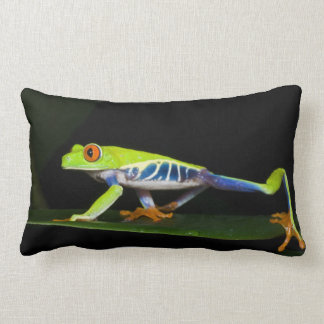 Costa Rica, Red-eyed Tree Frog (Agalychnis Lumbar Cushion
