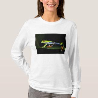 Costa Rica, Red-eyed Tree Frog (Agalychnis T-Shirt