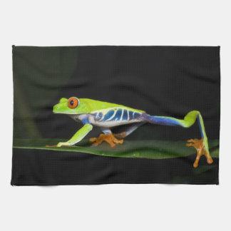 Costa Rica, Red-eyed Tree Frog (Agalychnis Tea Towel