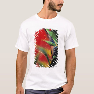 Costa Rica, Red Eyed Tree Frog. T-Shirt
