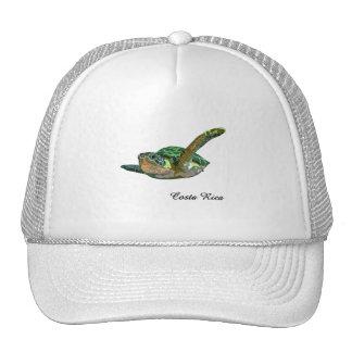 Costa Rica Sea Turtle Cap