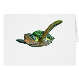 Costa Rica Sea Turtle Card