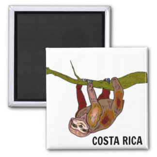 Costa Rica Sloth Magnet
