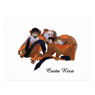 Costa Rica Titi Monkey Postcard