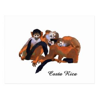 Costa Rica Titi Monkey Postcard