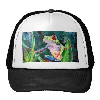 Costa Rica Tree Frog Cap