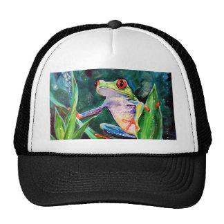 Costa Rica Tree Frog Cap