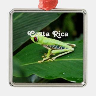 Costa Rica Tree Frog Christmas Ornament