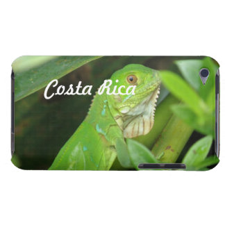 Costa Rican Lizard iPod Touch Cases