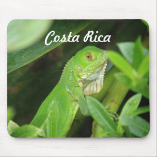 Costa Rican Lizard Mouse Mat