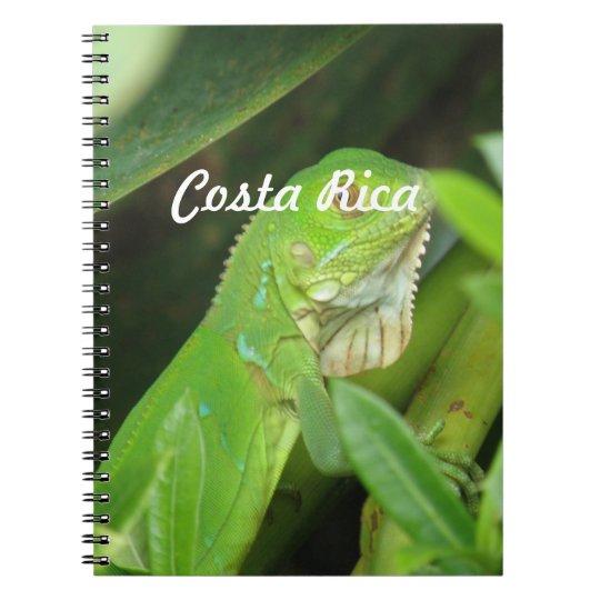 Costa Rican Lizard Spiral Notebook