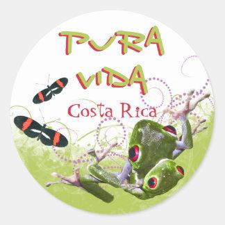 Costa Rican Pura Vida Tree Frog Stickers