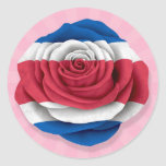 Costa Rican Rose Flag on Pink
