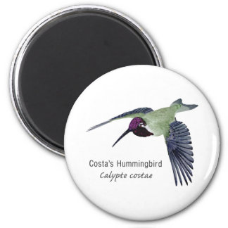 Costa s Hummingbird with Name Refrigerator Magnets