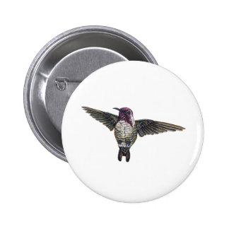 Costa's Hummingbird 6 Cm Round Badge