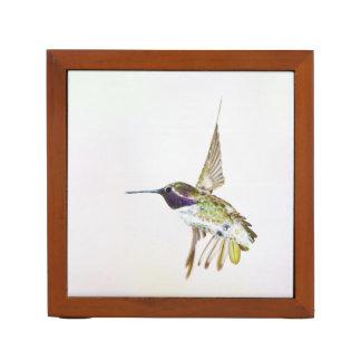 Costa's Hummingbird desk organizer Desk Organiser