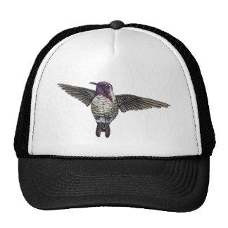 Costa's Hummingbird Mesh Hats