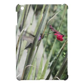 Costa's Hummingbird iPad Mini Case