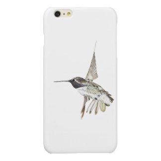 Costa's Hummingbird iPhone 6 Plus case