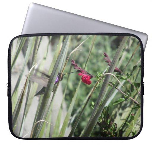 Costa's Hummingbird Computer Sleeve