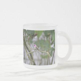 Costa's Hummingbird Coffee Mug