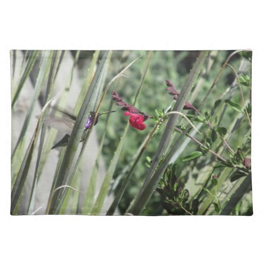 Costa's Hummingbird Placemat