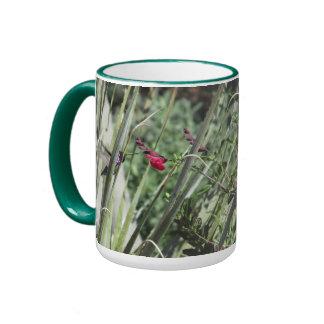 Costa's Hummingbird Ringer Mug