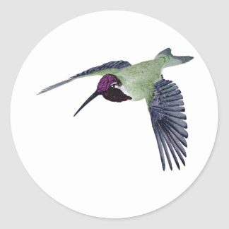 Costas Hummingbird Round Sticker
