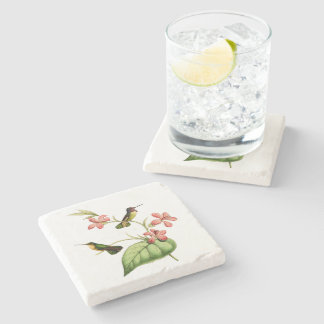 Costa's Hummingbird Stone Beverage Coaster