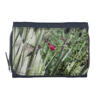 Costa's Hummingbird Wallets