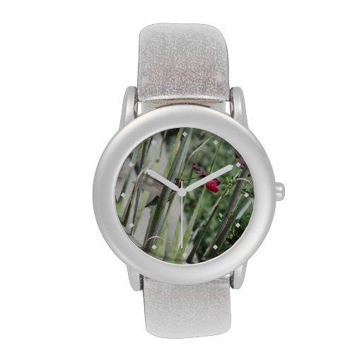 Costa's Hummingbird Wristwatches