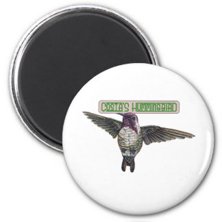 Costas Hummingbird with Banner 6 Cm Round Magnet